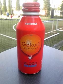 gokuri_orange.jpg